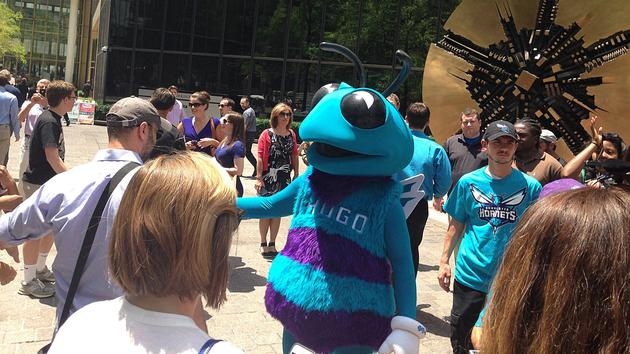 Hugo the Hornet interacts with fans  in Charlotte