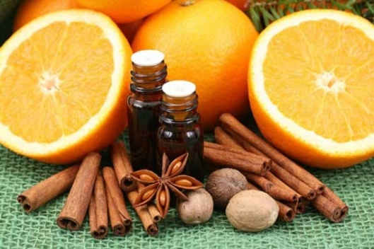 A picture of oranges, cinnamon sticks, and nuts surrounding two small vials of dark liquid.