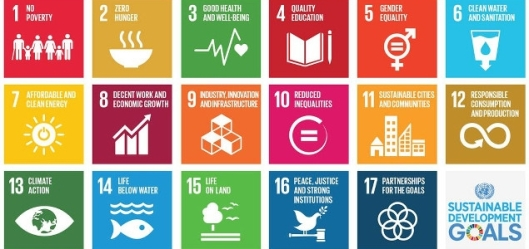 Seventeen numbered boxes featuring sustainable development goals.